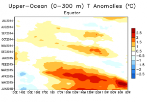 Evolution of the present El Niño pattern. This chart shows changes in Pacific Ocean temperature anomalies over the past year, with longitude along the x axis and time on the y axis.  Source: NOAA