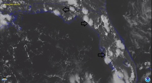 The black arrows point to developing sea breeze thunderstorms. On two of them, you can clearly see a line of small clouds adjacent to the thunderstorms that mark the location of the sea breeze front.  Source: University of Wisconsin