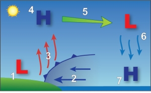 Schematic showing the sea breeze circulation and the development of the sea breeze front.  Source: NOAA